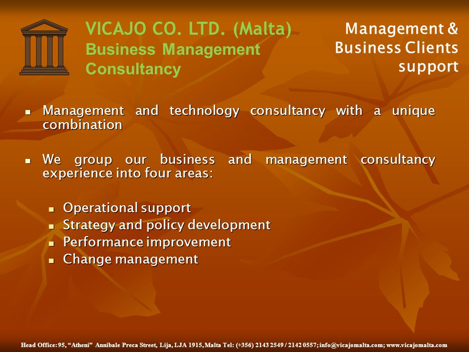 Management & Business Clients support