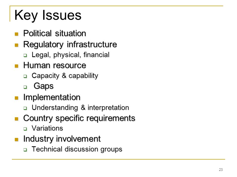 Key Issues Political situation Regulatory infrastructure