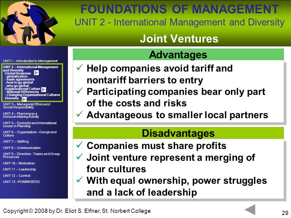 Joint Ventures Advantages Disadvantages