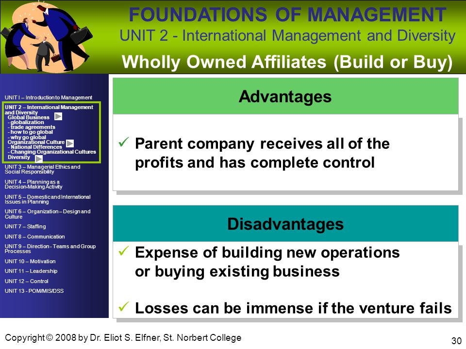 Wholly Owned Affiliates (Build or Buy)