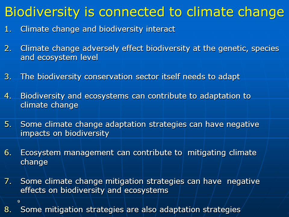 Biodiversity is connected to climate change
