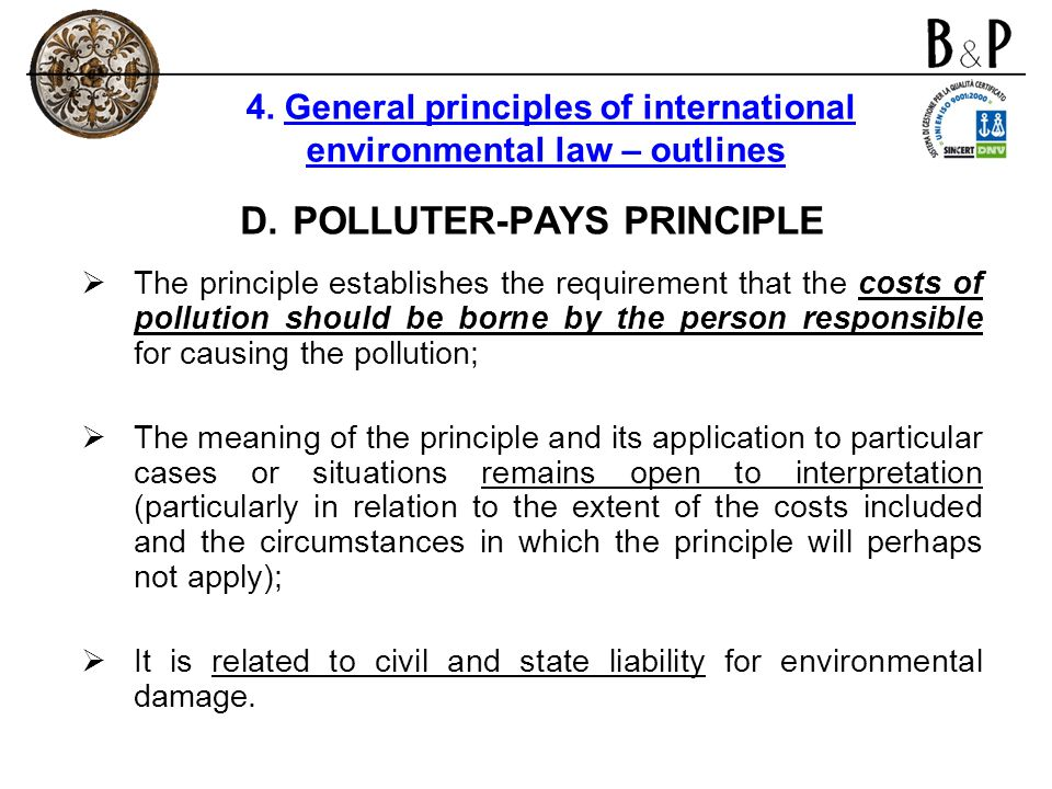 POLLUTER-PAYS PRINCIPLE