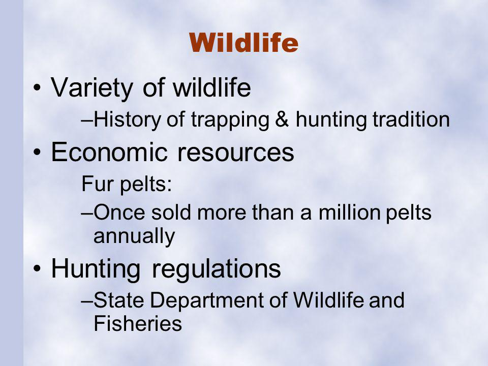 Wildlife Hunting Timber cutting Source of food Recreation
