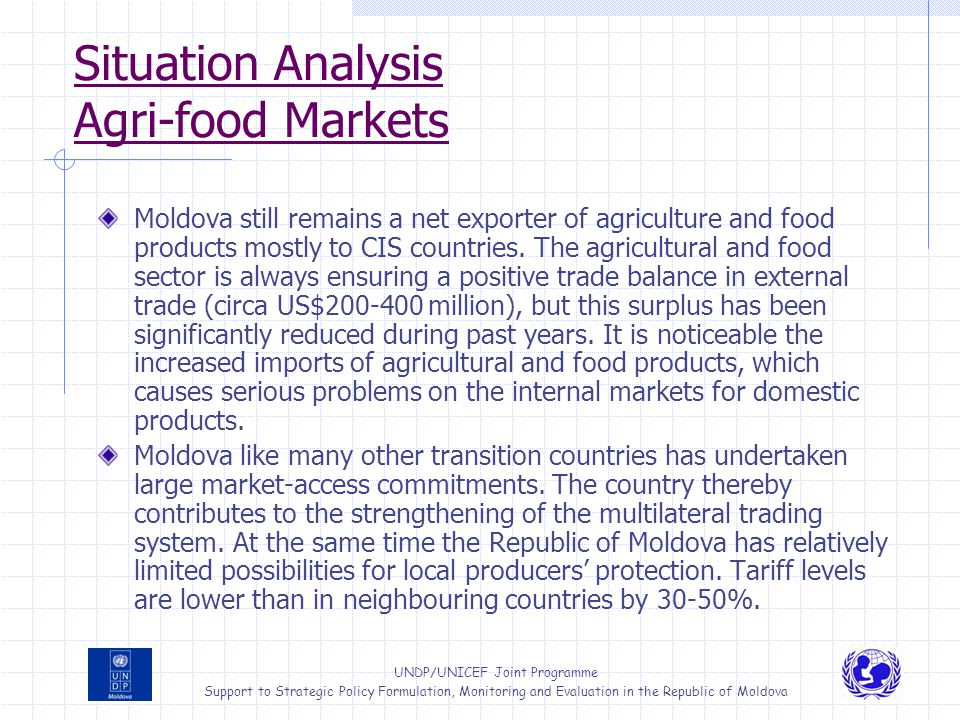 Situation Analysis Agri-food Markets