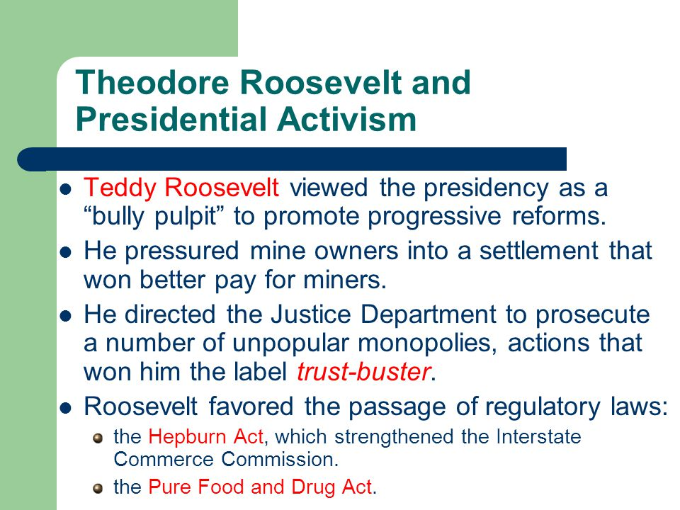 Theodore Roosevelt and Presidential Activism