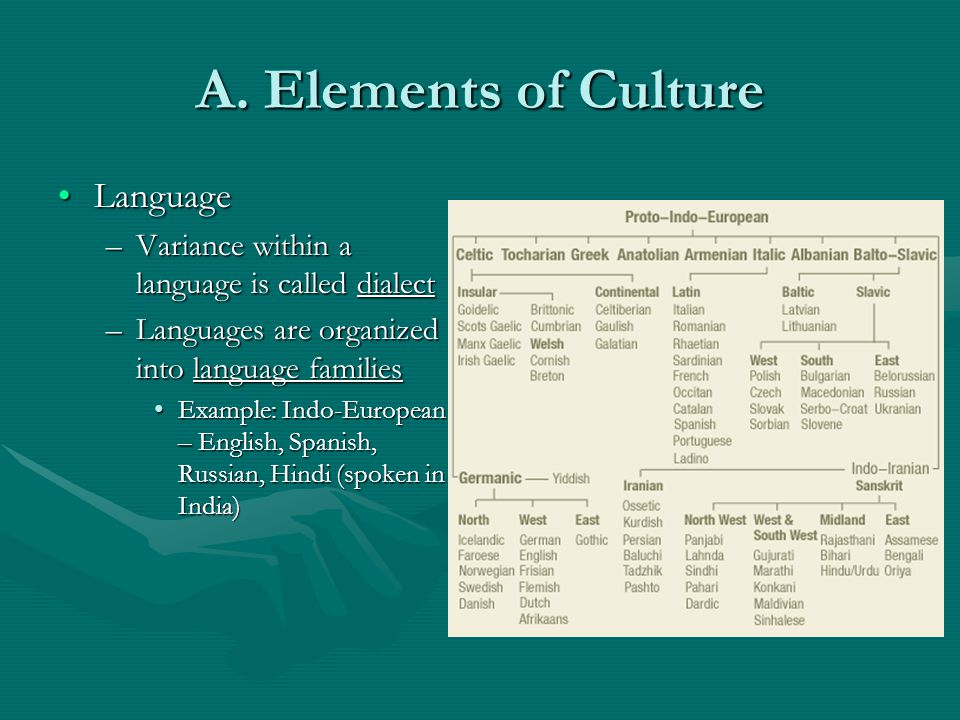 A. Elements of Culture Language