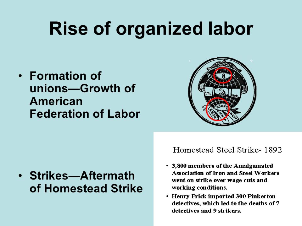 the formation and growth of womens movement phenomena in the united states history The history of unions in the united states  labor unions have existed in one form or another in the united states since the birth of the country  the first hundred years of us history saw.