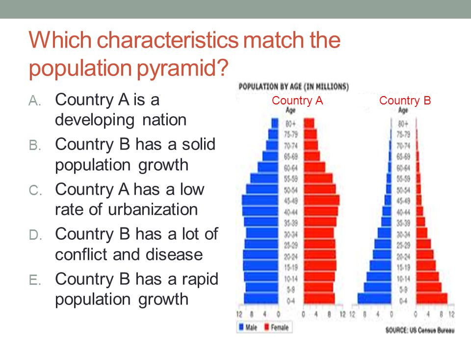 Which characteristics match the population pyramid