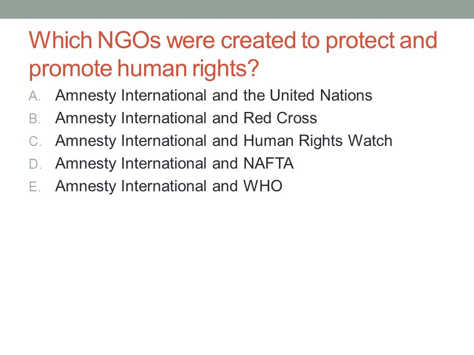 Which NGOs were created to protect and promote human rights