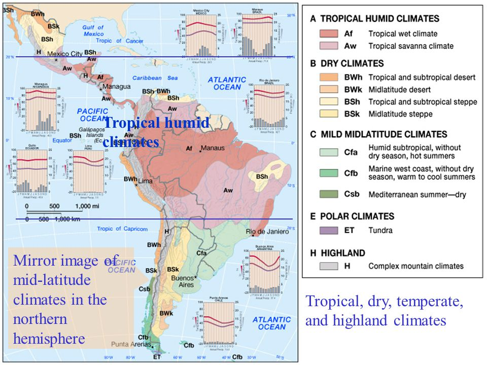 Tropical humid climates