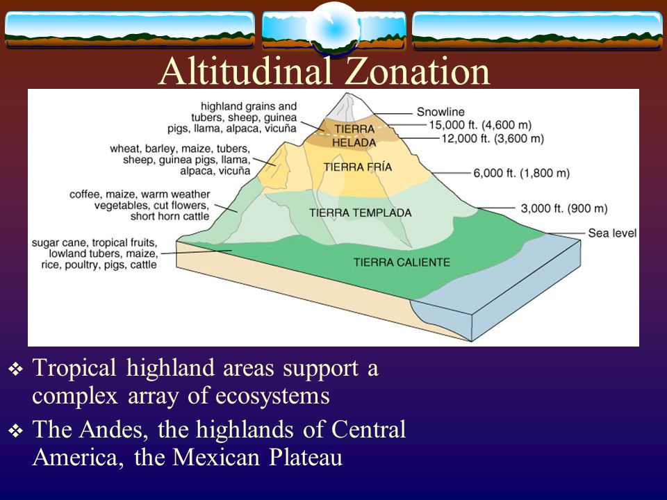 Altitudinal Zonation Tropical highland areas support a complex array of ecosystems.