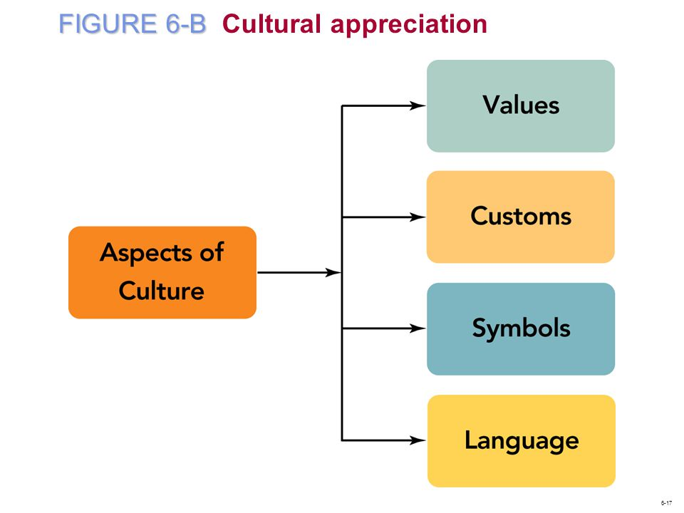 FIGURE 6-B Cultural appreciation