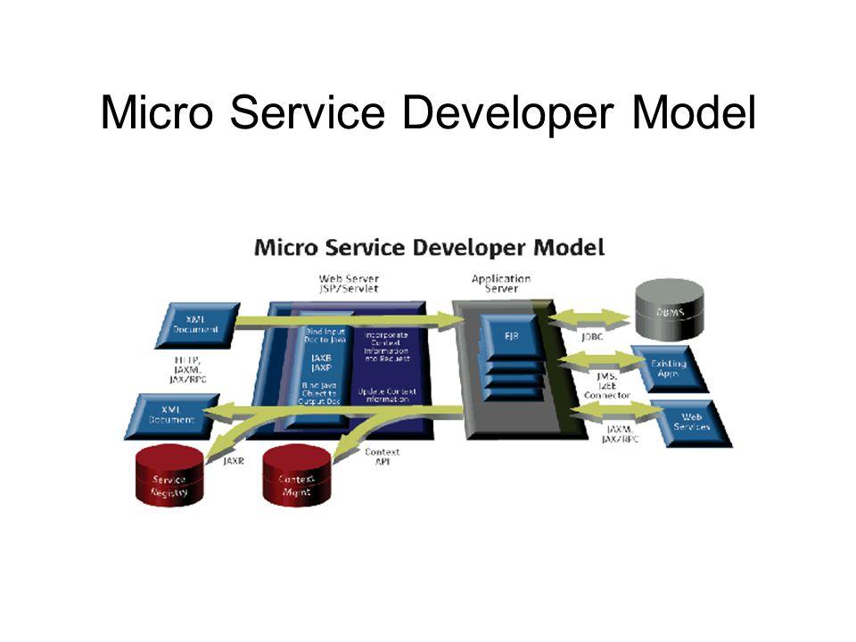Micro Service Developer Model