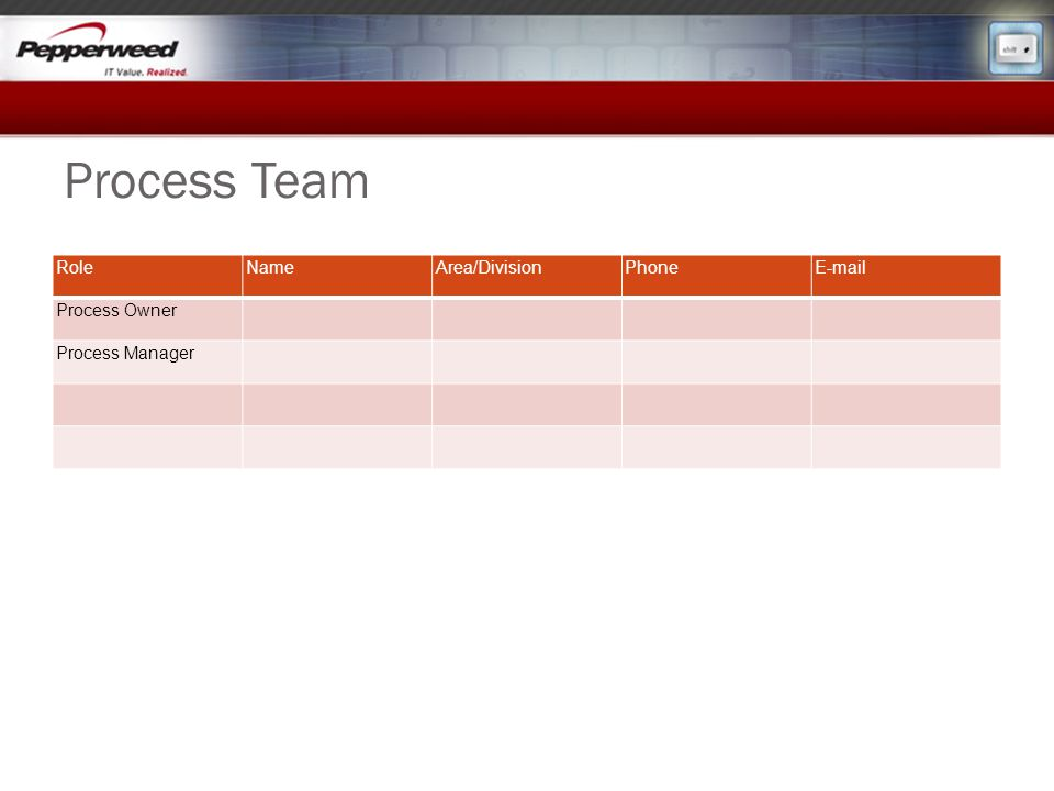 Process Team Role Name Area/Division Phone E-mail Process Owner
