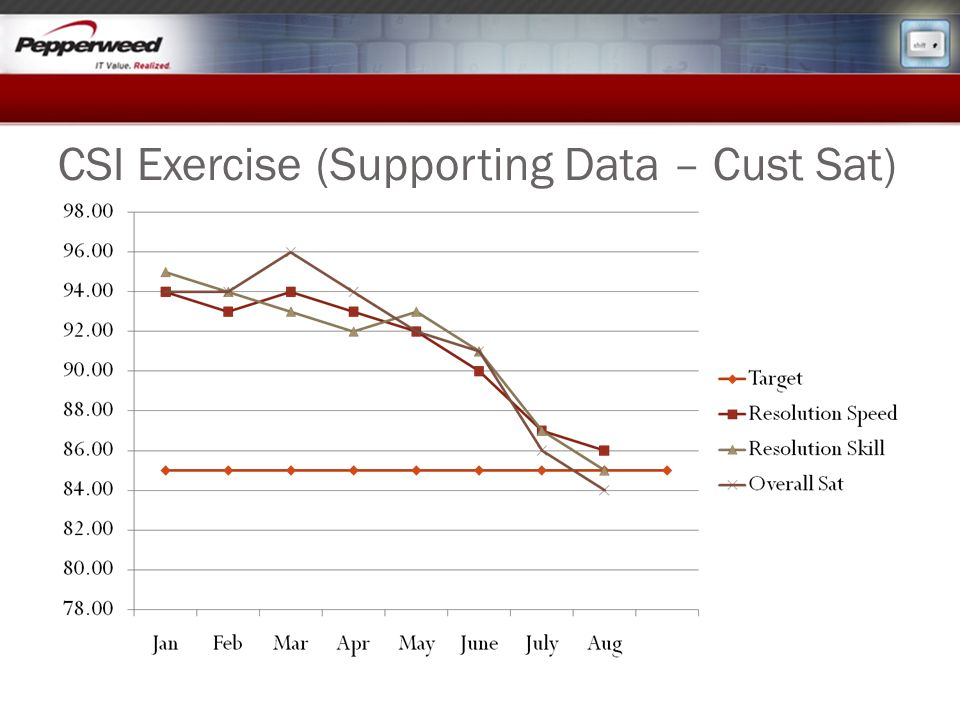CSI Exercise (Supporting Data – Cust Sat)