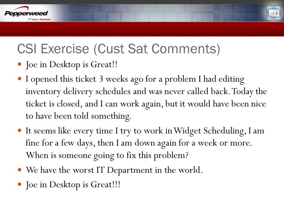 CSI Exercise (Cust Sat Comments)