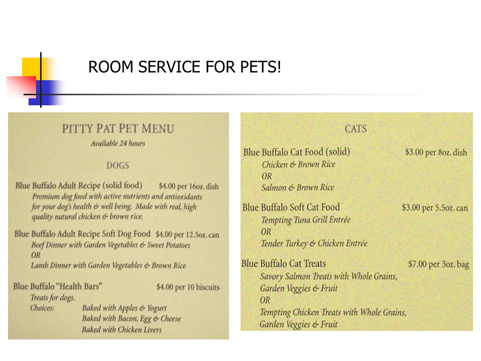 ROOM SERVICE FOR PETS!