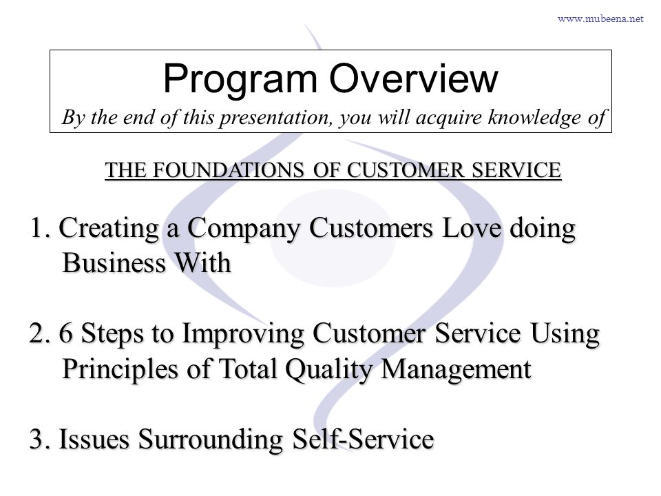 Program Overview By the end of this presentation, you will acquire knowledge of. THE FOUNDATIONS OF CUSTOMER SERVICE.