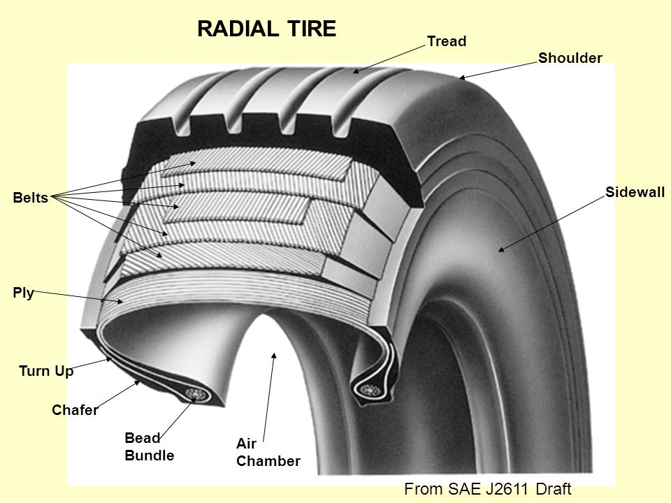 RADIAL TIRE From SAE J2611 Draft Tread Shoulder Sidewall Belts Ply