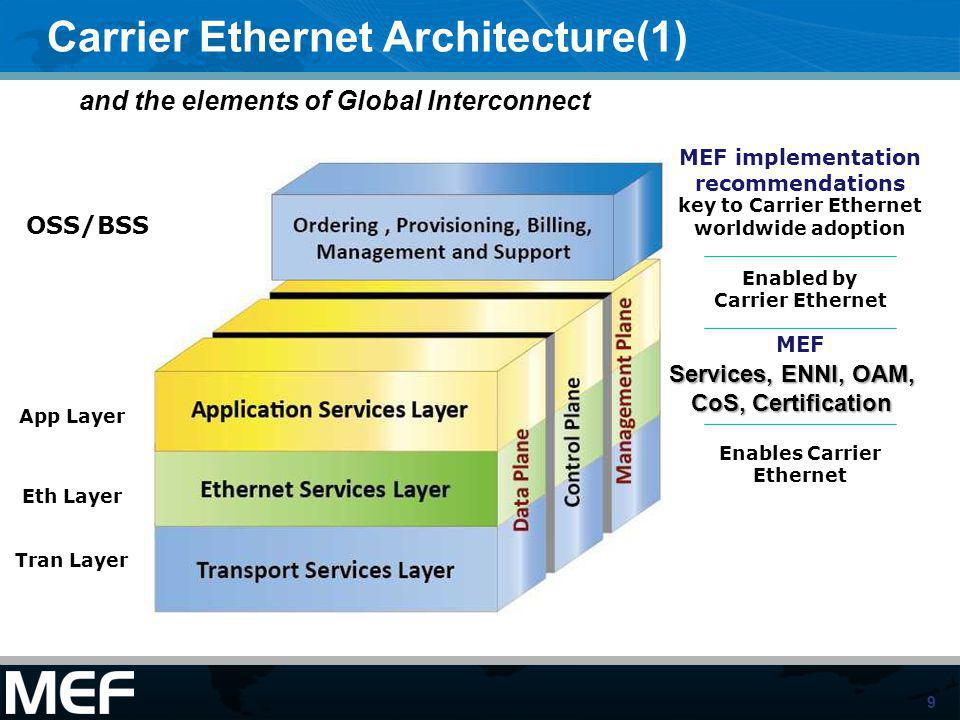 Carrier Ethernet Architecture(1)