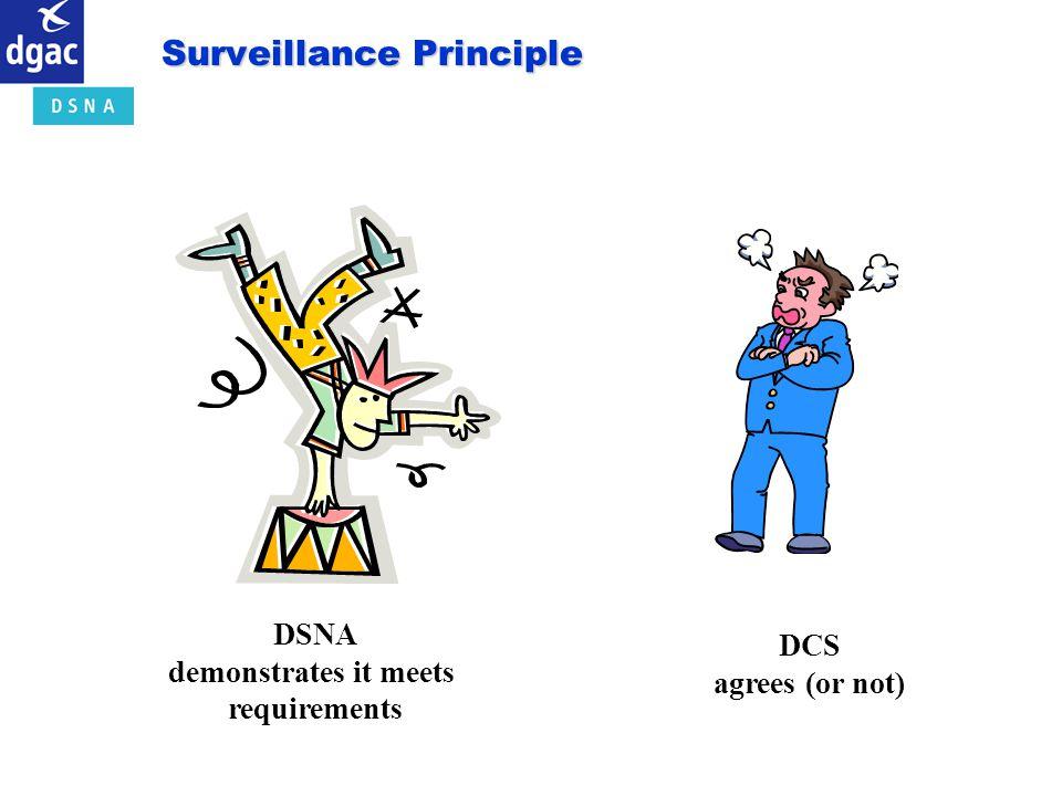 Surveillance Principle