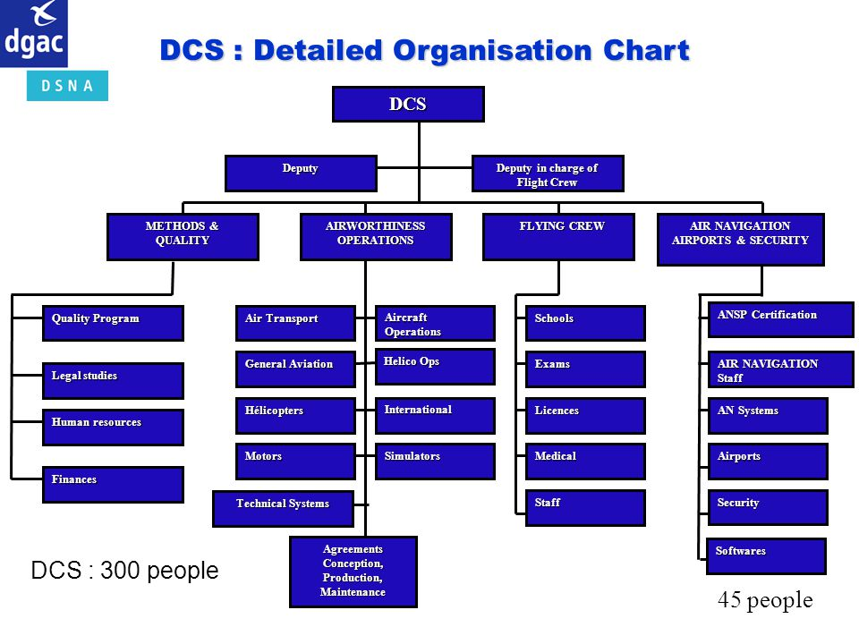 DCS : Detailed Organisation Chart