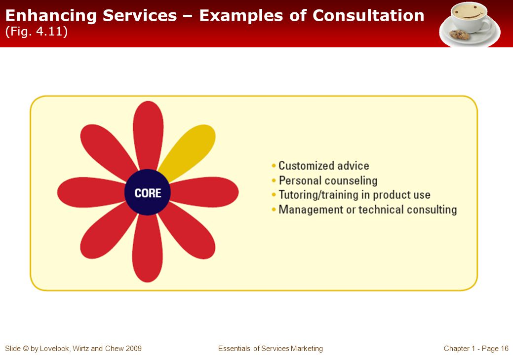 Enhancing Services – Examples of Consultation (Fig. 4.11)