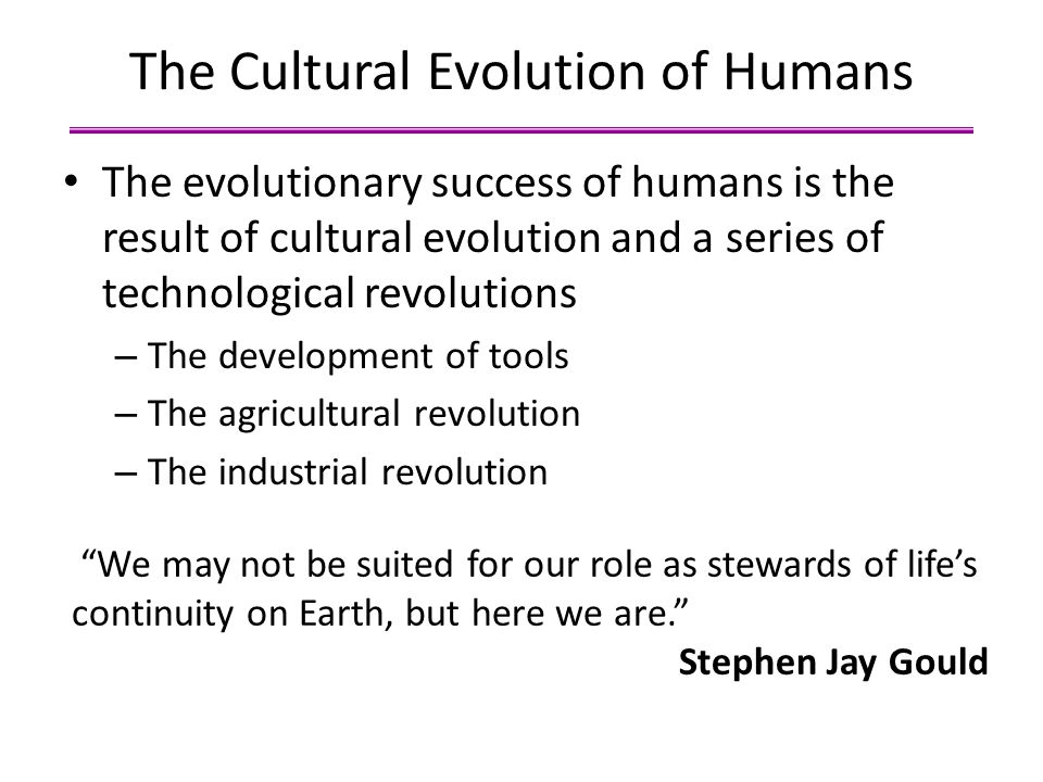 The Cultural Evolution of Humans