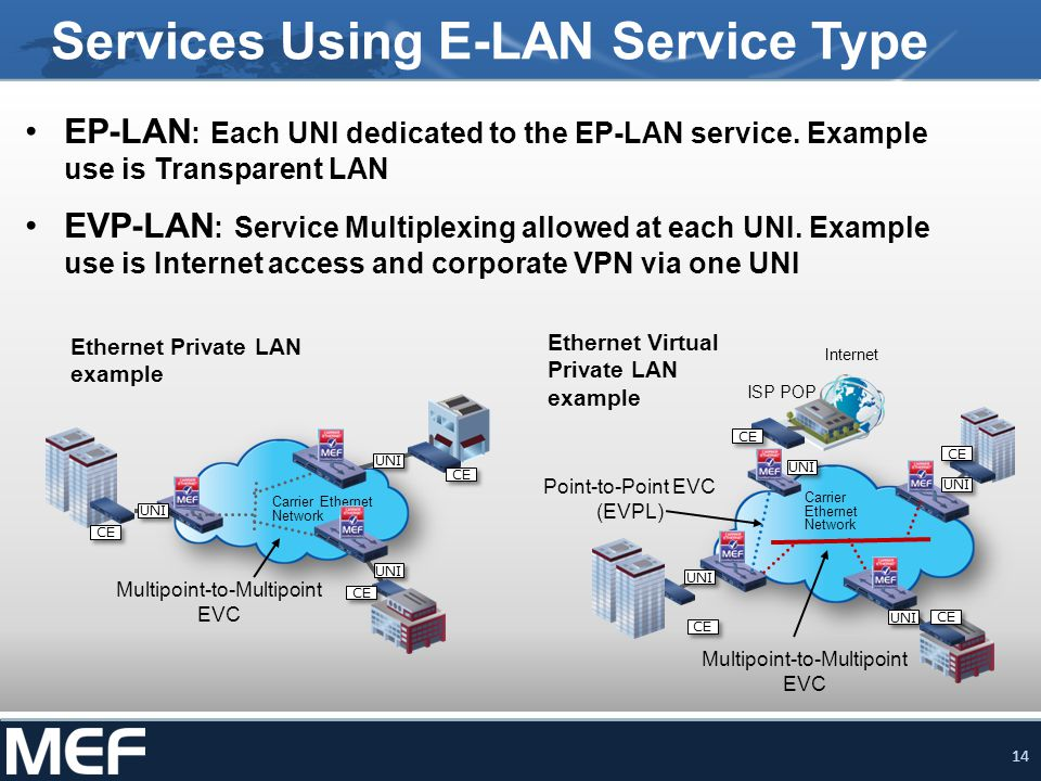 Services Using E-LAN Service Type