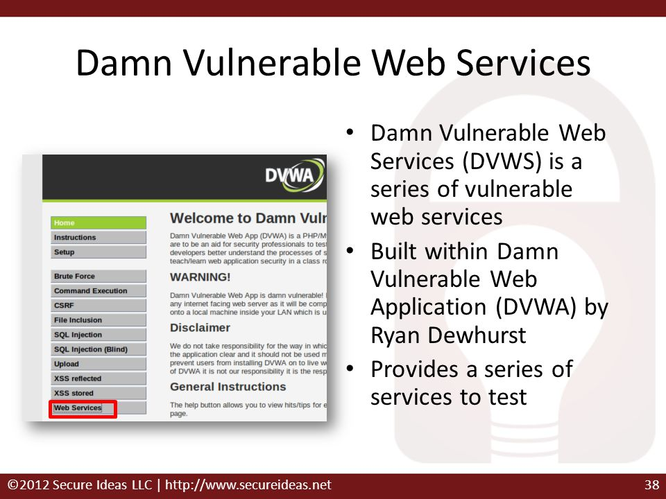 Damn Vulnerable Web Services