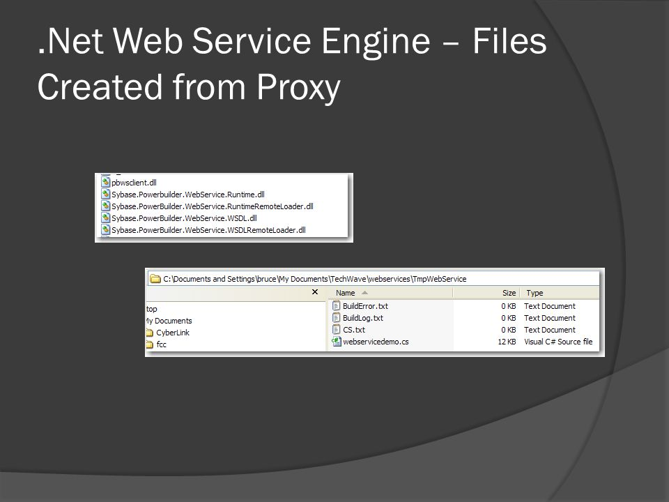.Net Web Service Engine – Files Created from Proxy