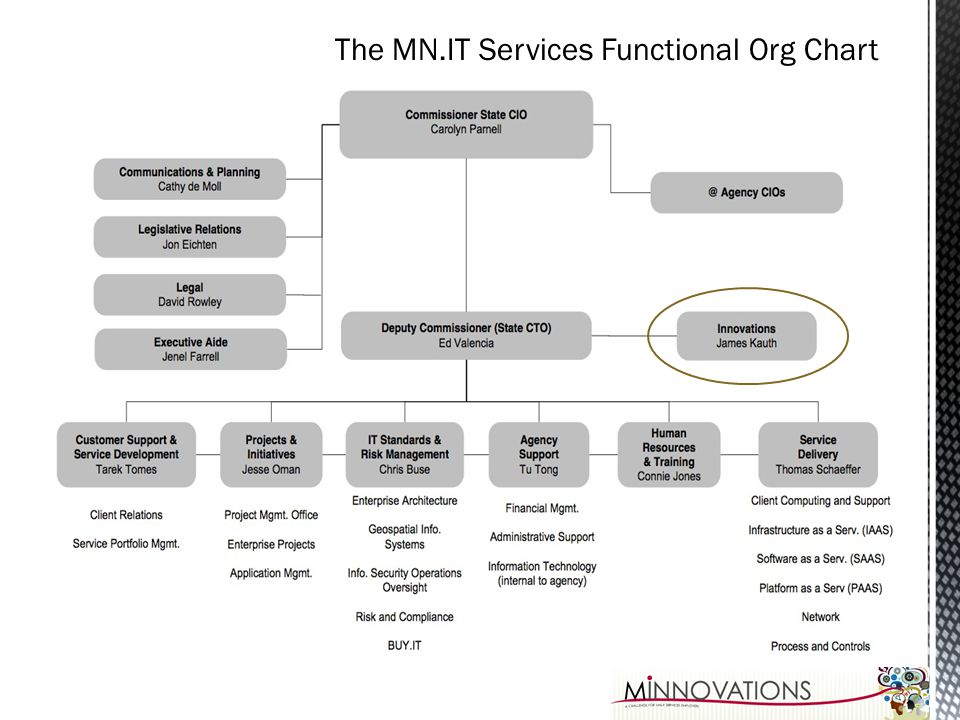 The MN.IT Services Functional Org Chart