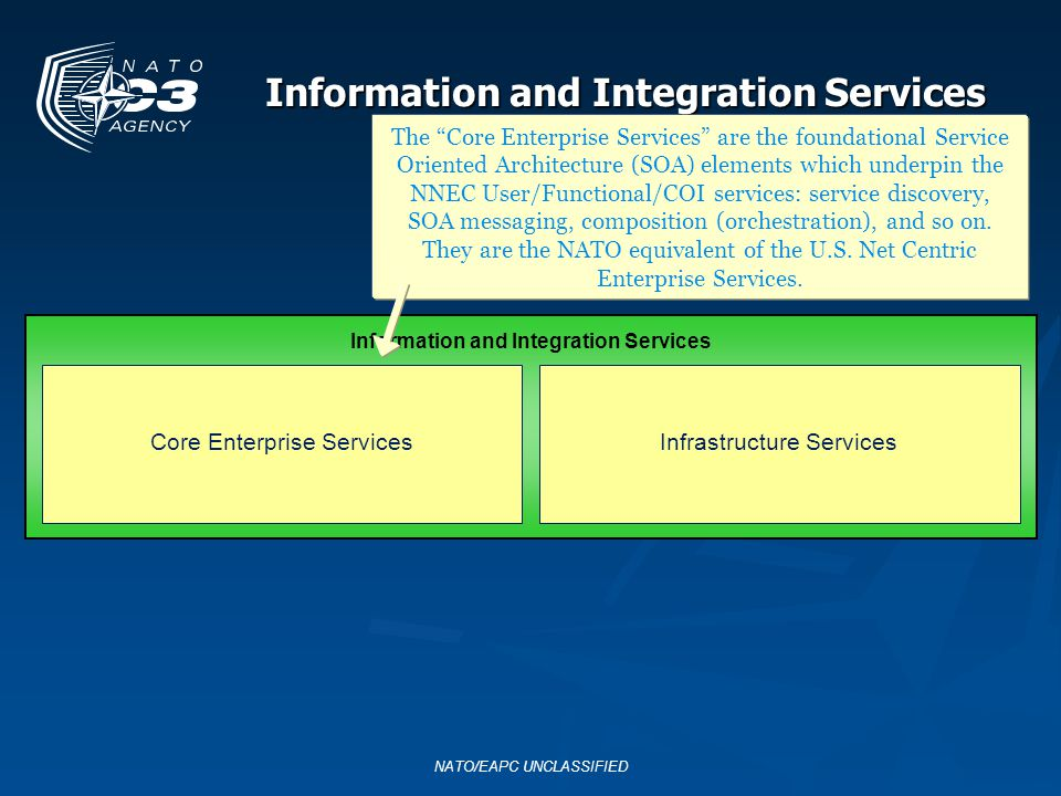 Information and Integration Services