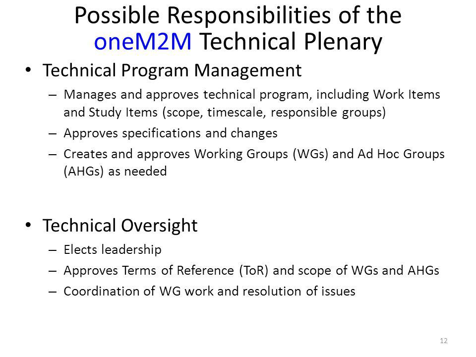 Possible Responsibilities of the oneM2M Technical Plenary