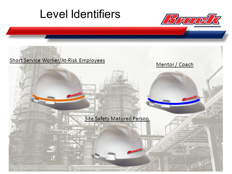 Level Identifiers Short Service Worker/At-Risk Employees