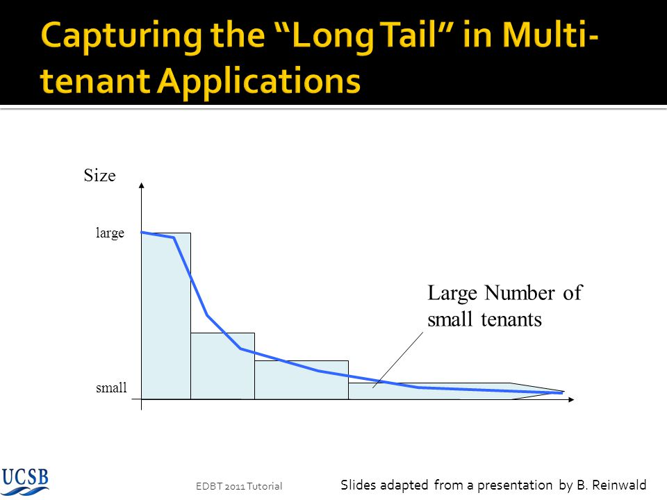 Capturing the Long Tail in Multi-tenant Applications