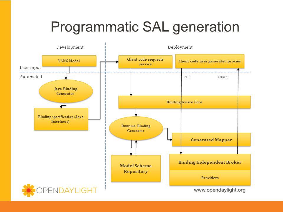 Programmatic SAL generation