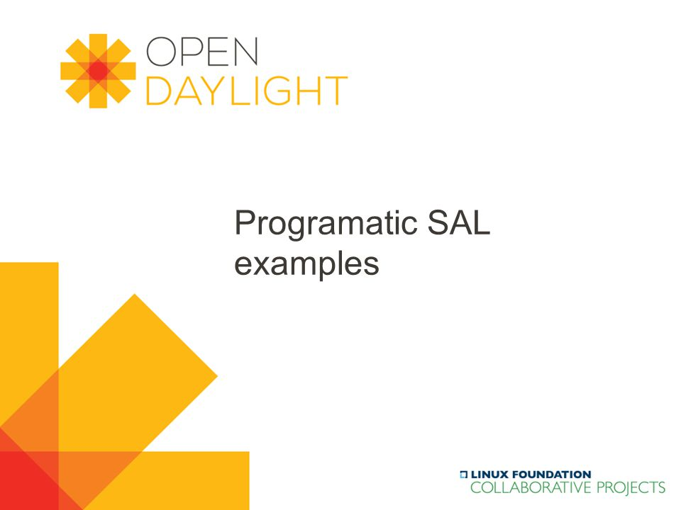 Programatic SAL examples