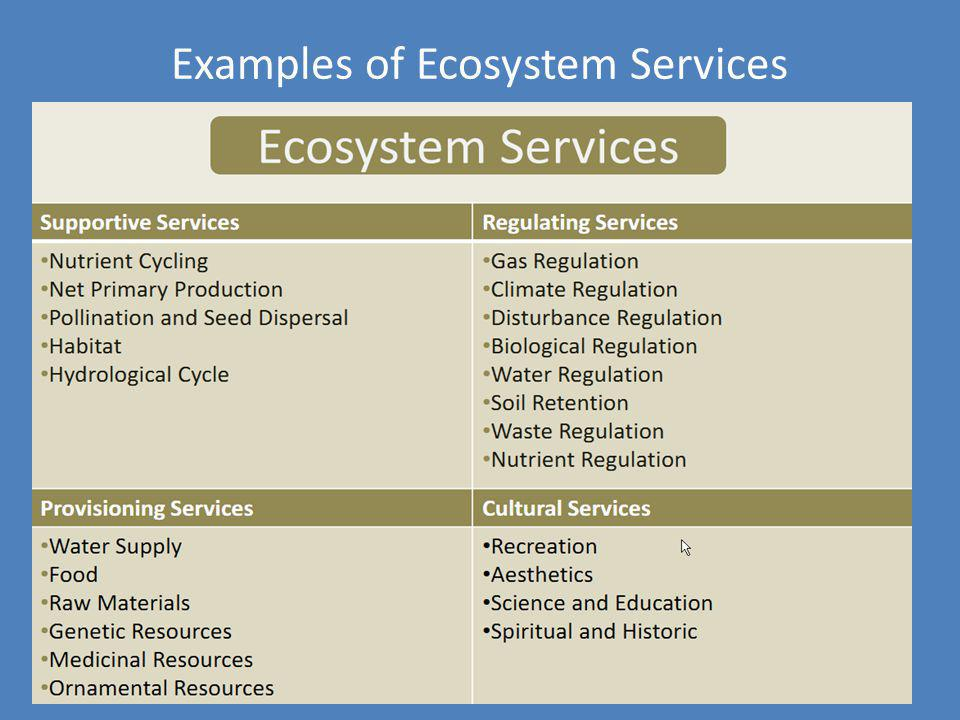 Examples of Ecosystem Services