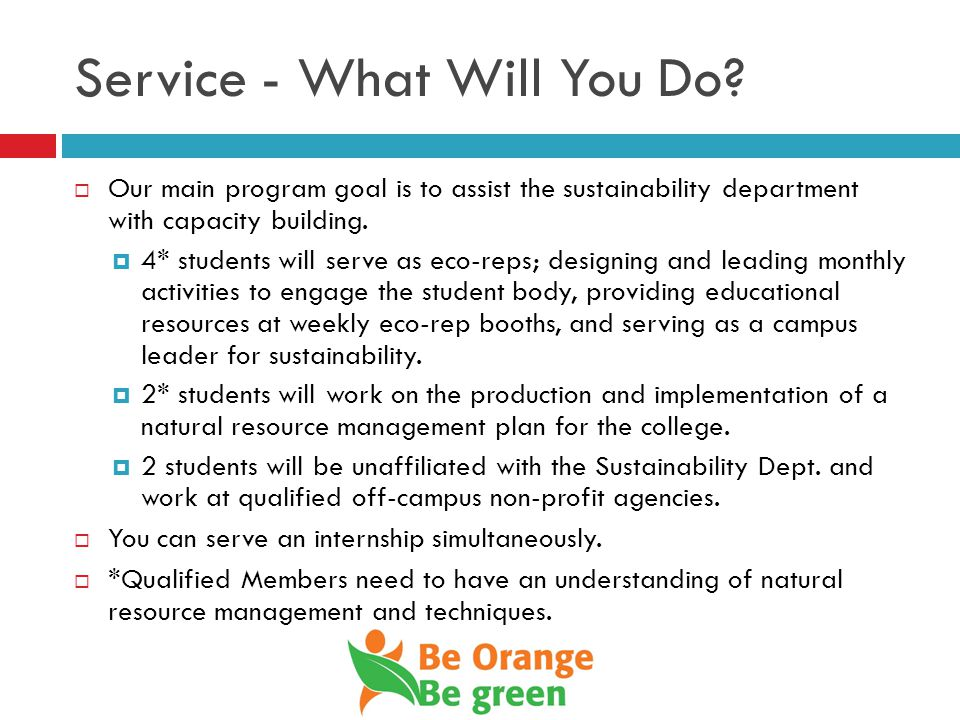 Service - What Will You Do