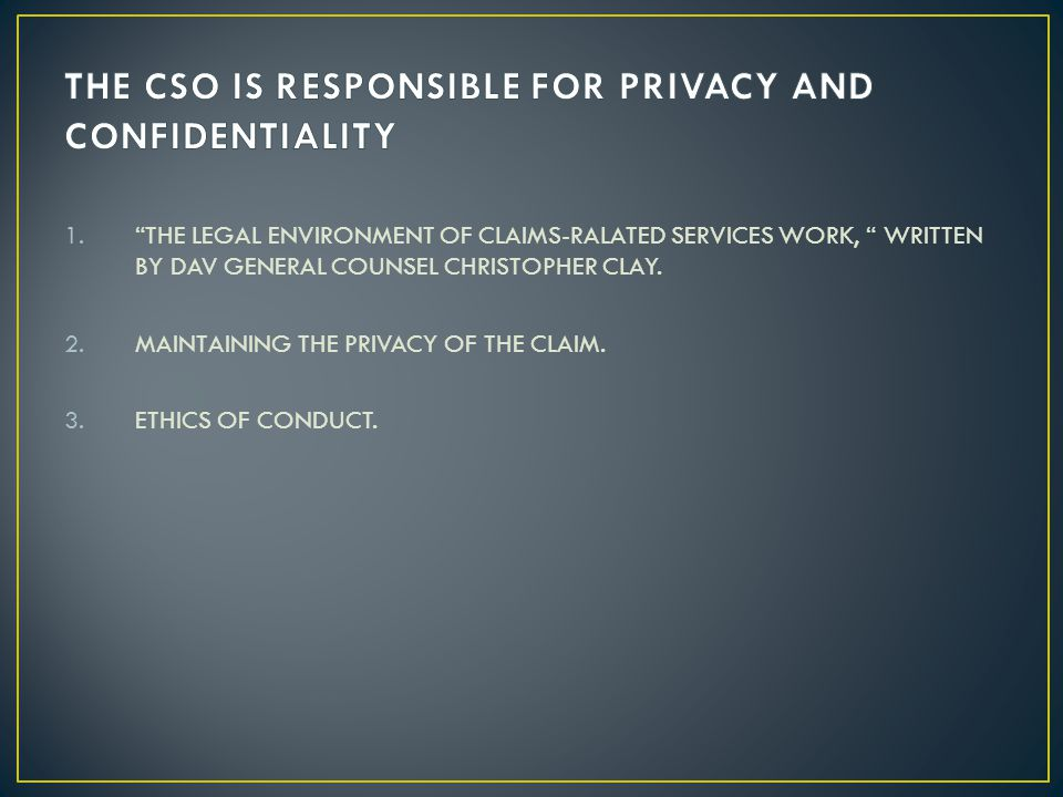 THE CSO IS RESPONSIBLE FOR PRIVACY AND CONFIDENTIALITY