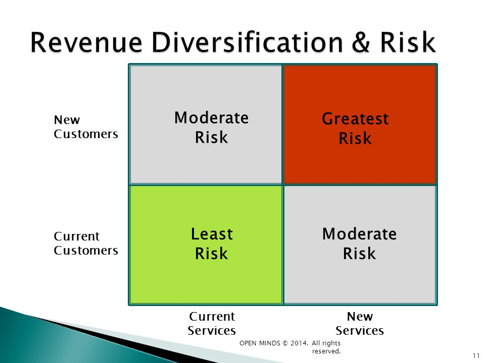 Revenue Diversification & Risk