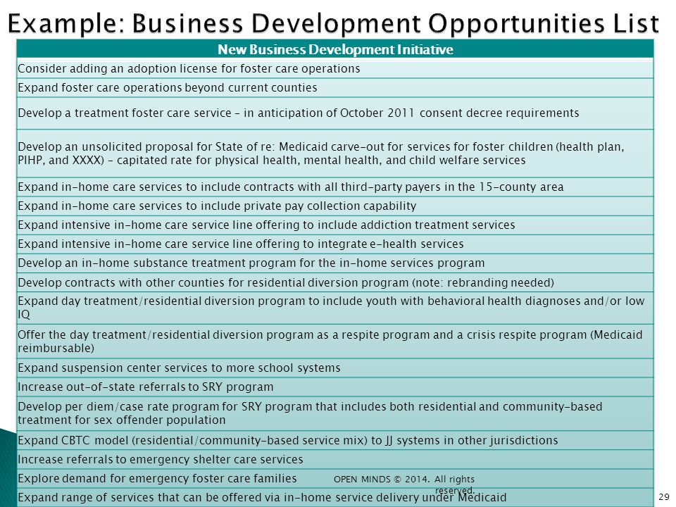 Example: Business Development Opportunities List