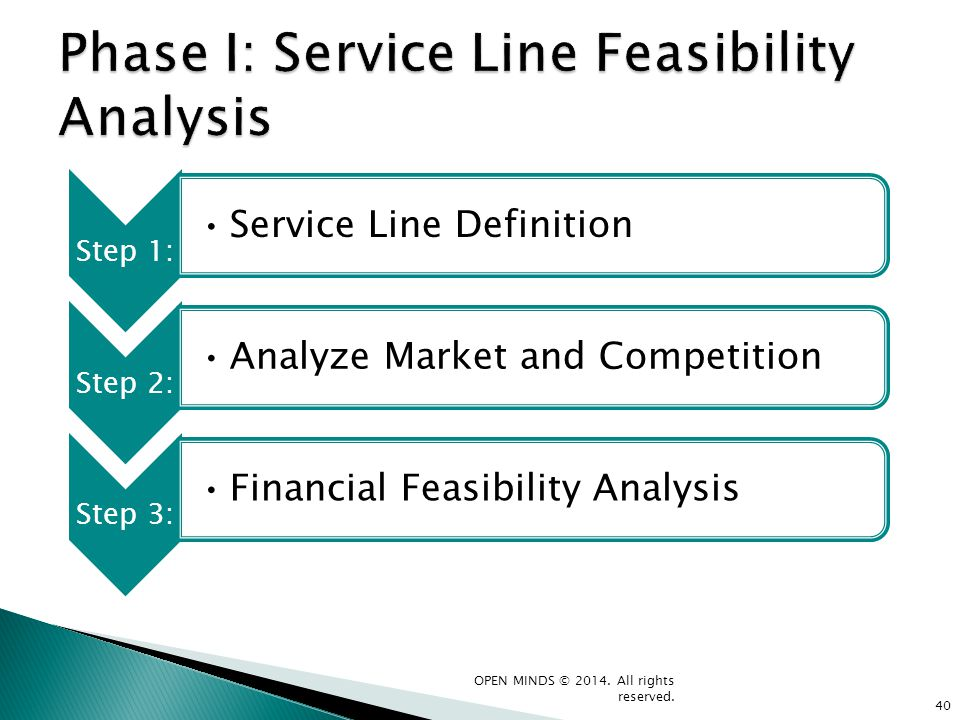 Phase I: Service Line Feasibility Analysis