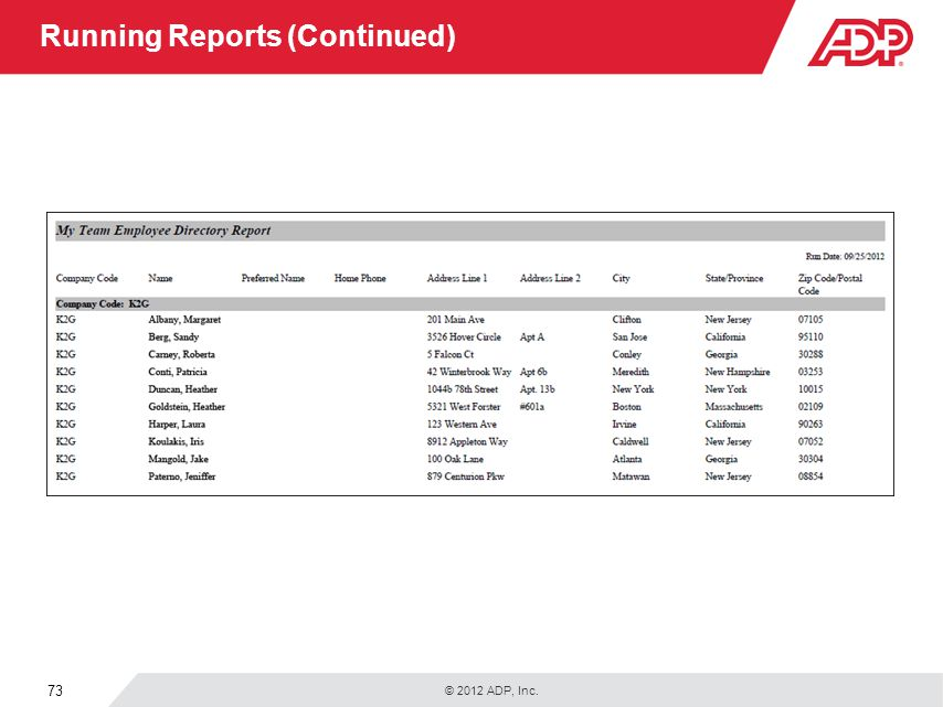 Running Reports (Continued)