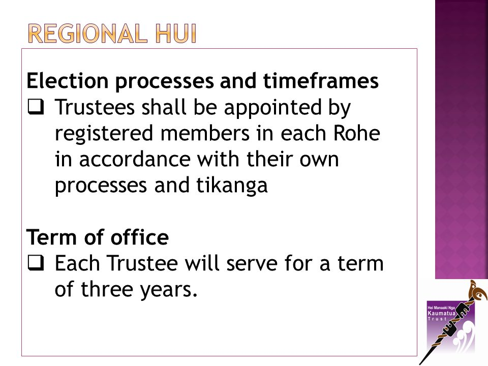 Regional hui Election processes and timeframes