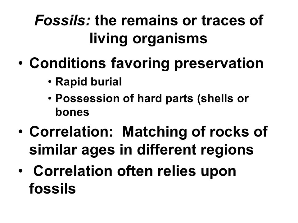 Fossils: the remains or traces of living organisms