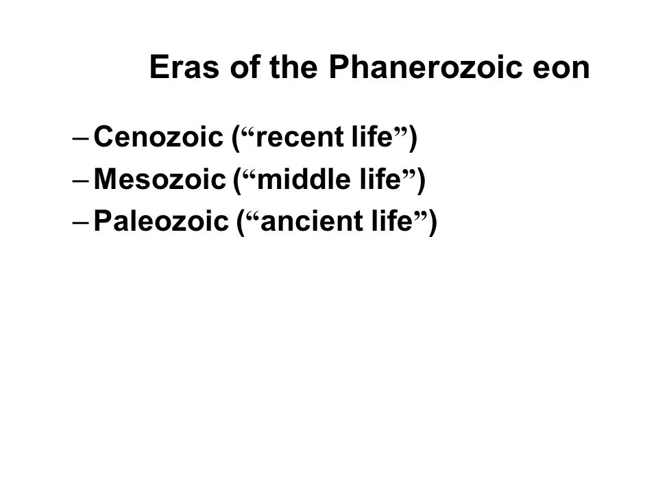 Eras of the Phanerozoic eon