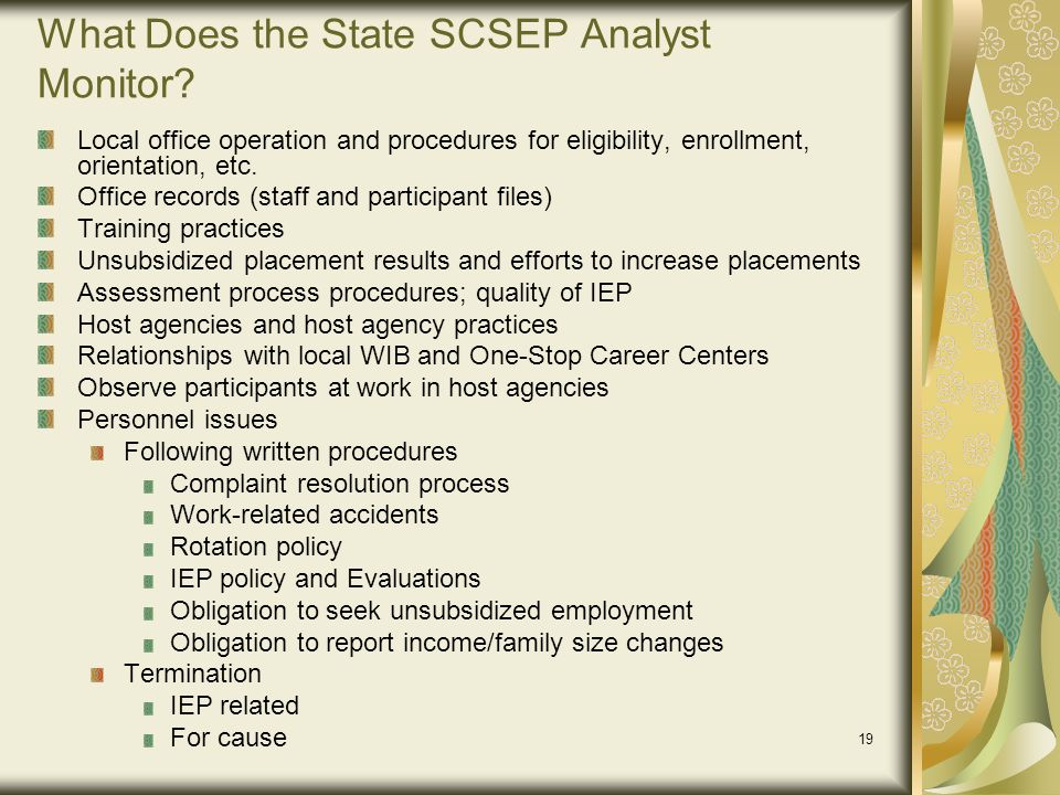 What Does the State SCSEP Analyst Monitor