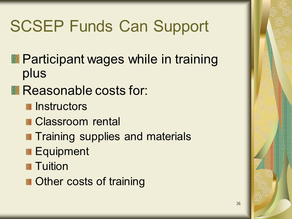 SCSEP Funds Can Support